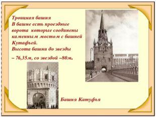 Троицкая башня В башне есть проездные ворота которые соединены каменным мосто