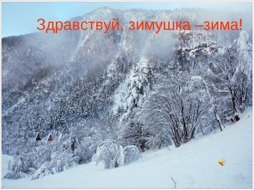 Здравствуй, зимушка –зима!