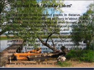 "National Park ""Braslav Lakes"" is one of the most beautiful places in Belarus."