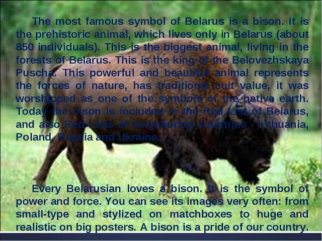 The most famous symbol of Belarus is a bison. It is the prehistoric animal, w...
