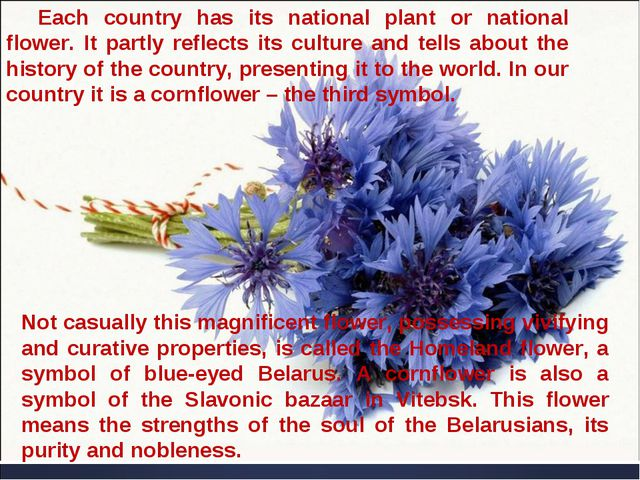 Each country has its national plant or national flower. It partly reflects it...