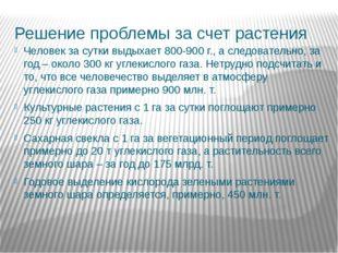 Решение проблемы за счет растения Человек за сутки выдыхает 800-900 г., а сле