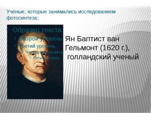 Ученые, которые занимались исследованием фотосинтеза: Ян Баптист ван Гельмонт