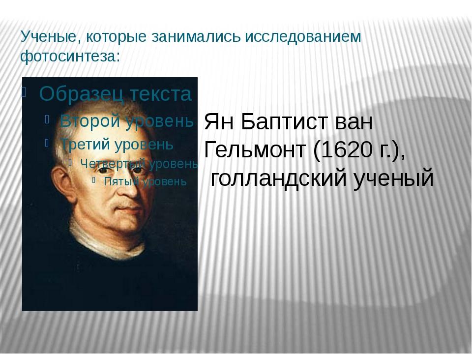 Ученые, которые занимались исследованием фотосинтеза: Ян Баптист ван Гельмонт...