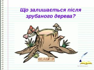 Що залишається після зрубаного дерева? http://ku4mina.ucoz.ru/