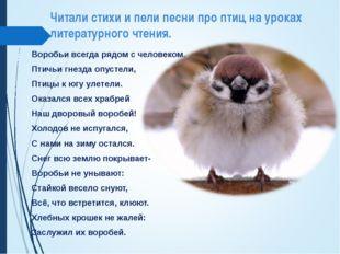 Читали стихи и пели песни про птиц на уроках литературного чтения. Воробьи вс