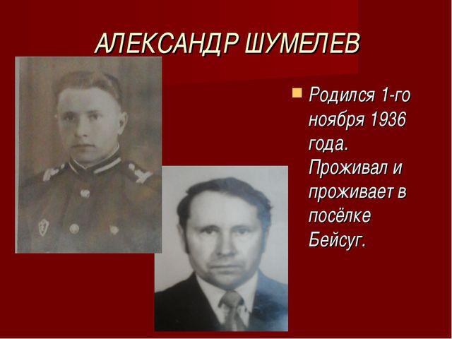 АЛЕКСАНДР ШУМЕЛЕВ Родился 1-го ноября 1936 года. Проживал и проживает в посёл...