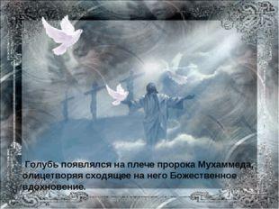 Голубь появлялся на плече пророка Мухаммеда, олицетворяя сходящее на него Бо