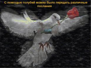 С помощью голубей можно было передать различные послания