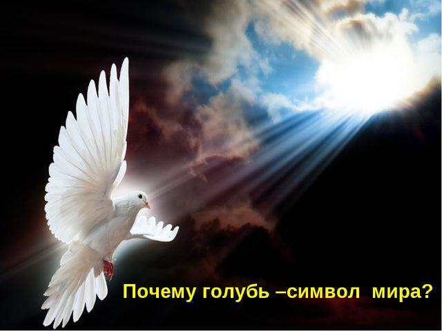 Почему голубь –символ мира?
