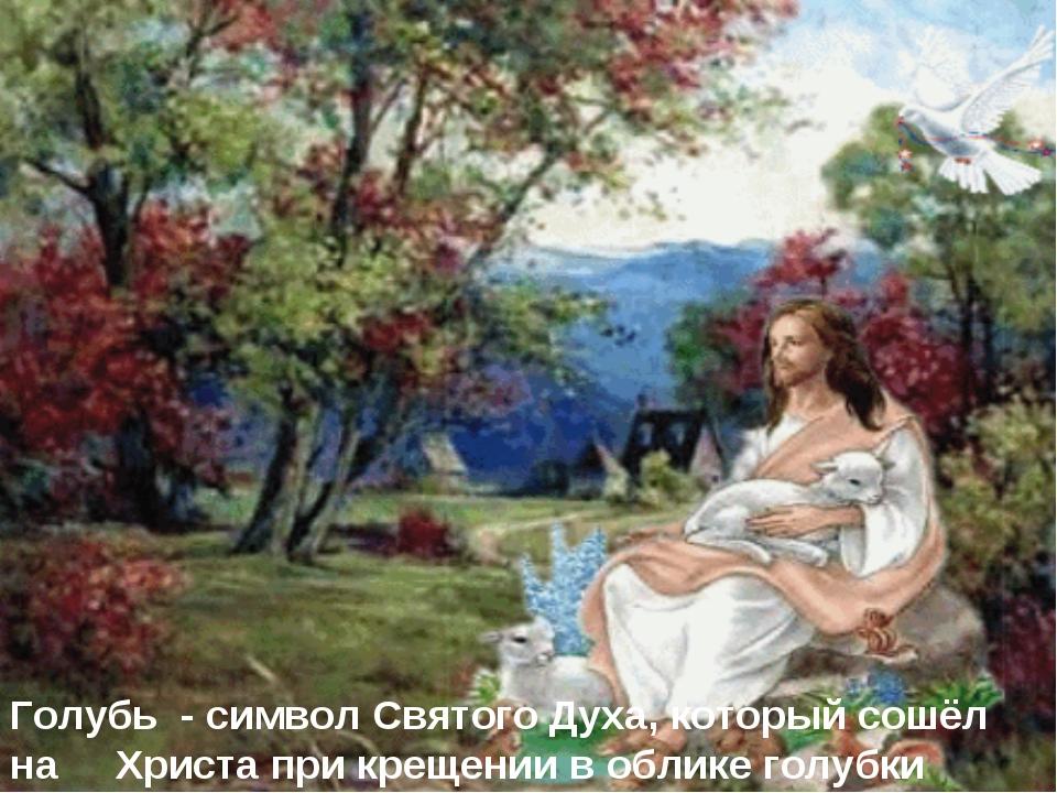 Голубь - символ Святого Духа, который сошёл на Христа при крещении в облике...