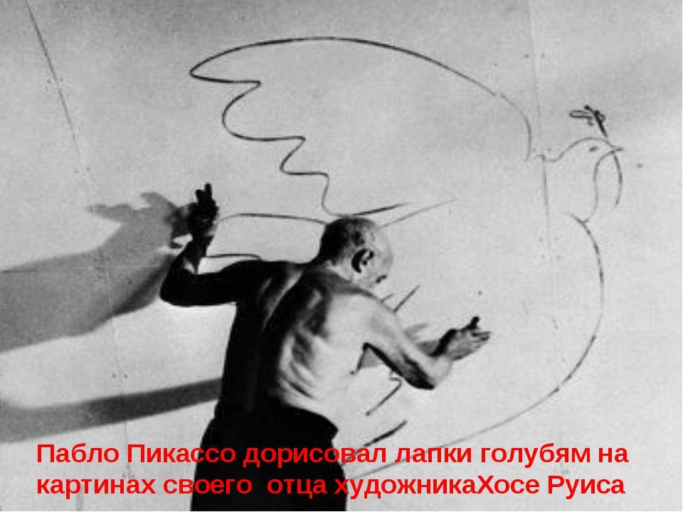Пабло Пикассо дорисовал лапки голубям на картинах своего отца художникаХосе...