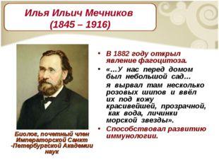 В 1882 году открыл явление фагоцитоза. «…У нас перед домом был небольшой сад…