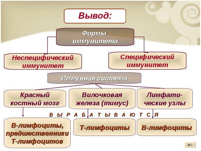 Формы иммунитета Неспецифический иммунитет Специфический иммунитет Иммунная с...