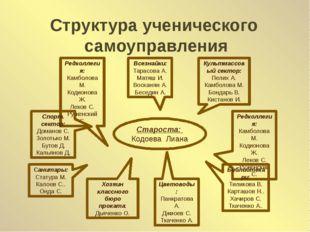 Структура ученического самоуправления Староста: Кодоева Лиана Редколлегия: Ка