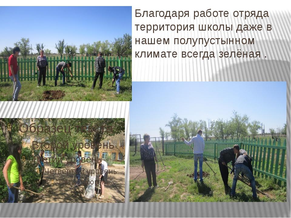 Благодаря работе отряда территория школы даже в нашем полупустынном климате в...