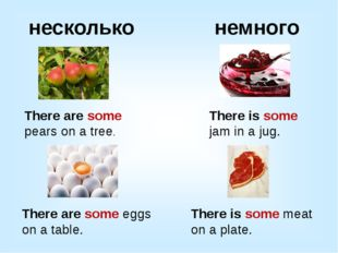 несколько немного There are some pears on a tree. There is some jam in a jug.