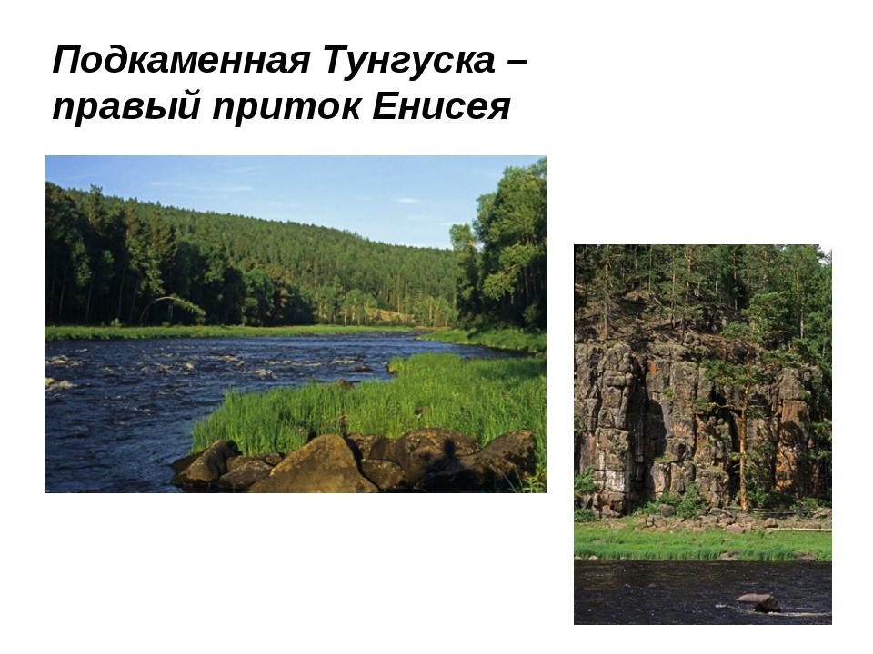 Подкаменная Тунгуска – правый приток Енисея