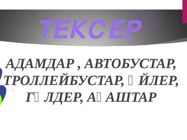 АДАМДАР , АВТОБУСТАР, ТРОЛЛЕЙБУСТАР, ҮЙЛЕР, ГҮЛДЕР, АҒАШТАР ТЕКСЕР