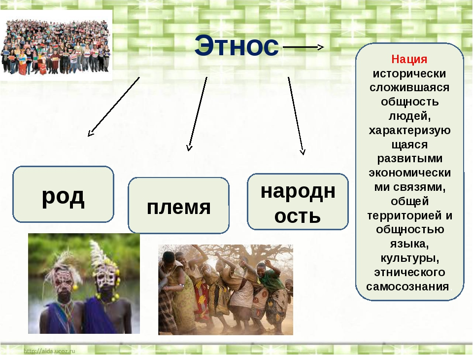 Этнос род племя народность Нация исторически сложившаяся общность людей, хара...