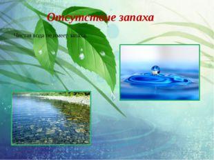 Отсутствие запаха Чистая вода не имеет запаха.