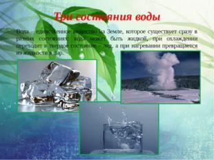 Три состояния воды Вода – единственное вещество на Земле, которое существует
