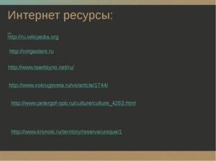 Интернет ресурсы: http://ru.wikipedia.org http://volgastars.ru http://www.tsa