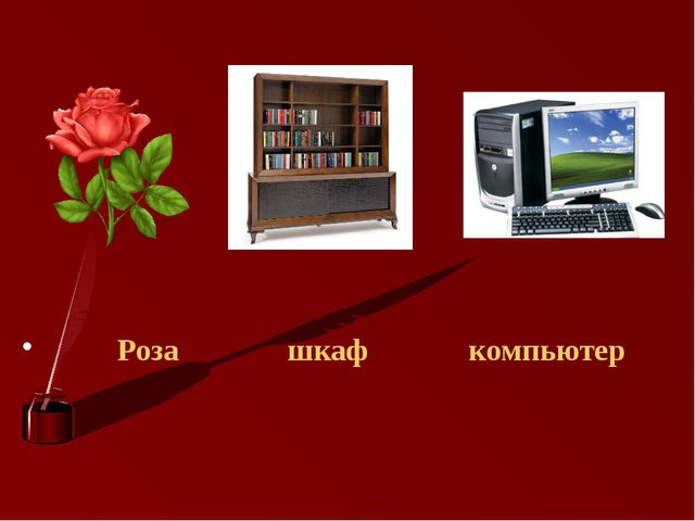 Роза шкаф компьютер