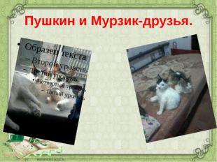 Пушкин и Мурзик-друзья.