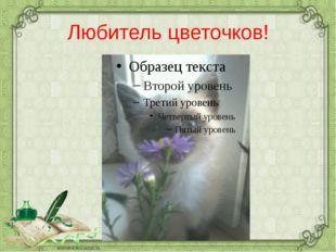 Любитель цветочков!