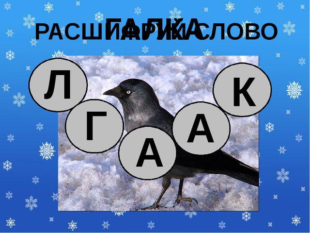 ГАЛКА РАСШИФРУЙ СЛОВО Г А А К Л