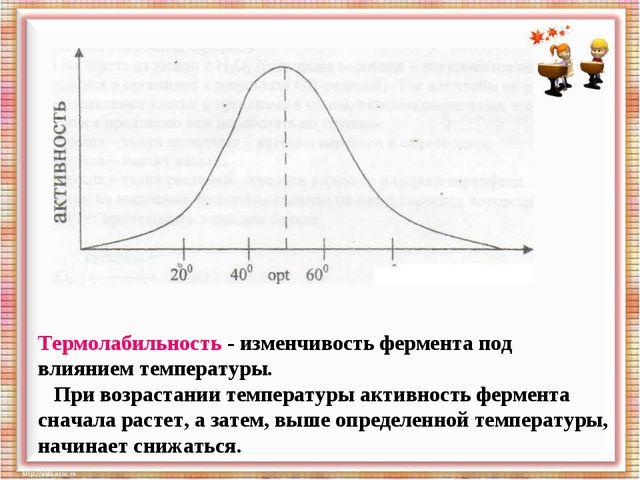 Термолабильность - изменчивость фермента под влиянием температуры. При возрас...