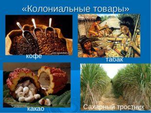 «Колониальные товары» кофе табак какао Сахарный тростник