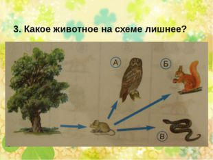 3. Какое животное на схеме лишнее?