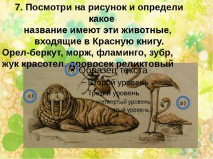 7. Посмотри на рисунок и определи какое название имеют эти животные, входящие