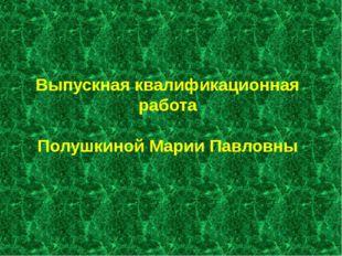 Выпускная квалификационная работа Полушкиной Марии Павловны