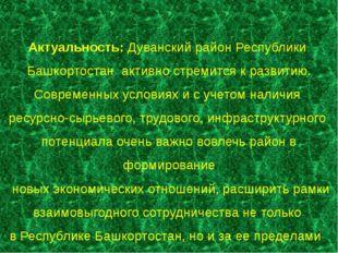 Актуальность: Дуванский район Республики Башкортостан активно стремится к раз