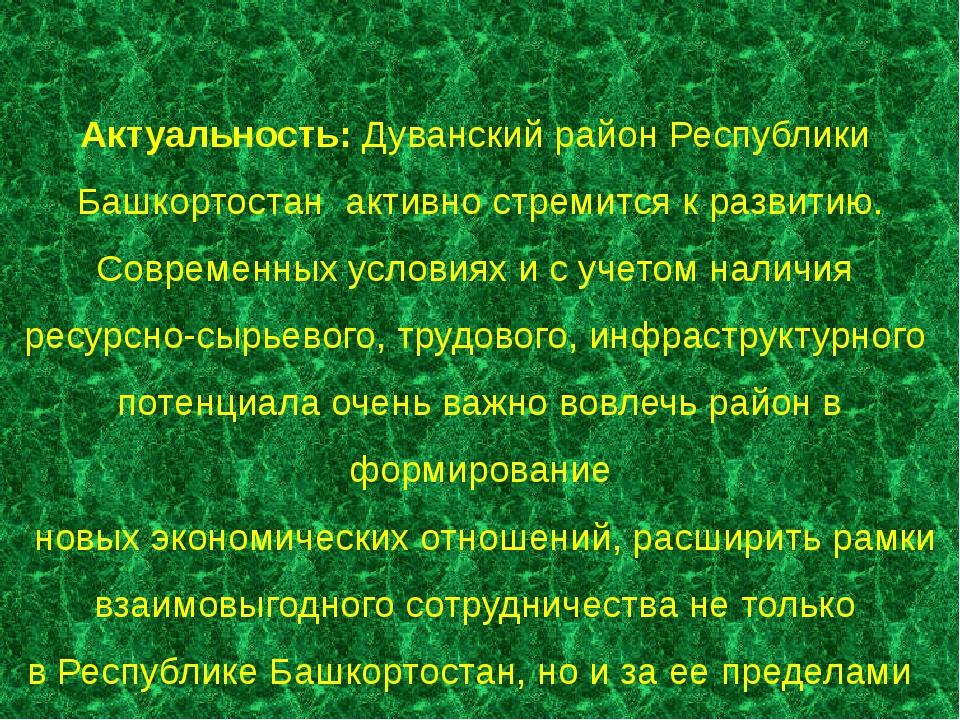Актуальность: Дуванский район Республики Башкортостан активно стремится к раз...
