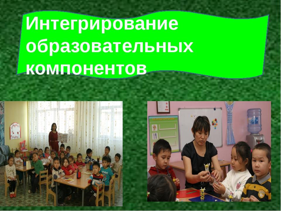 Интегрирование образовательных компонентов