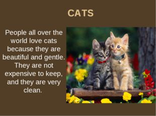 CATS People all over the world love cats because they are beautiful and gentl