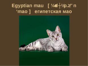 Egyptian mau [ɪˈdʒɪp.ʃən 'mao] египетская мао