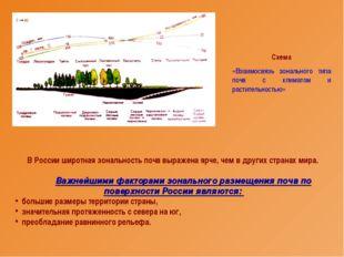 В России широтная зональность почв выражена ярче, чем в других странах мира.