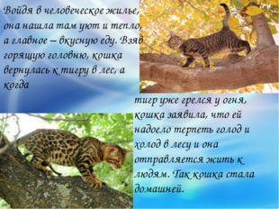 тигр уже грелся у огня, кошка заявила, что ей надоело терпеть голод и холод в