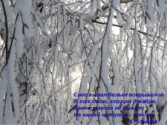 Снег выпал белым покрывалом В холодном, хмуром декабре. Давно такого не бывал...