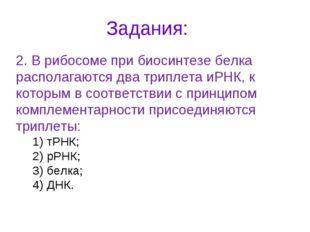 Задания: 2. В рибосоме при биосинтезе белка располагаются два триплета иРНК,