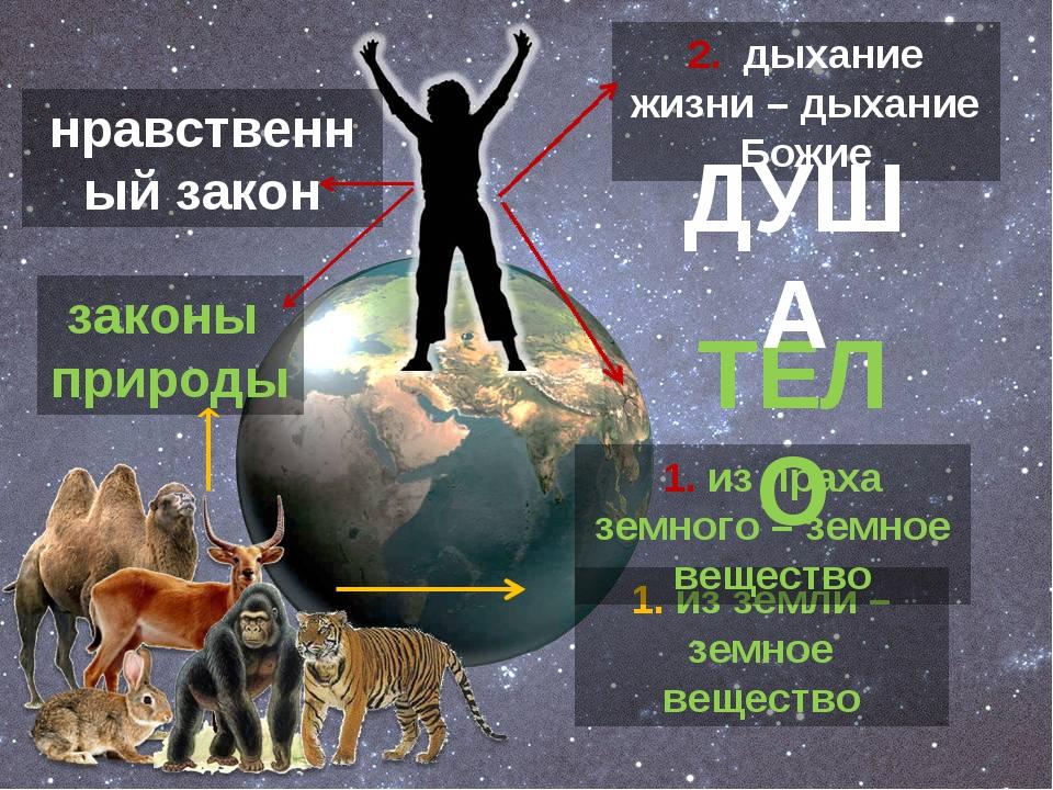 1. из земли – земное вещество 1. из праха земного – земное вещество 2. дыхани...