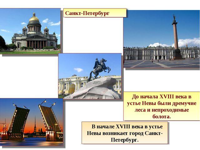 Санкт-Петербург До начала XVIII века в устье Невы были дремучие леса и непрох...