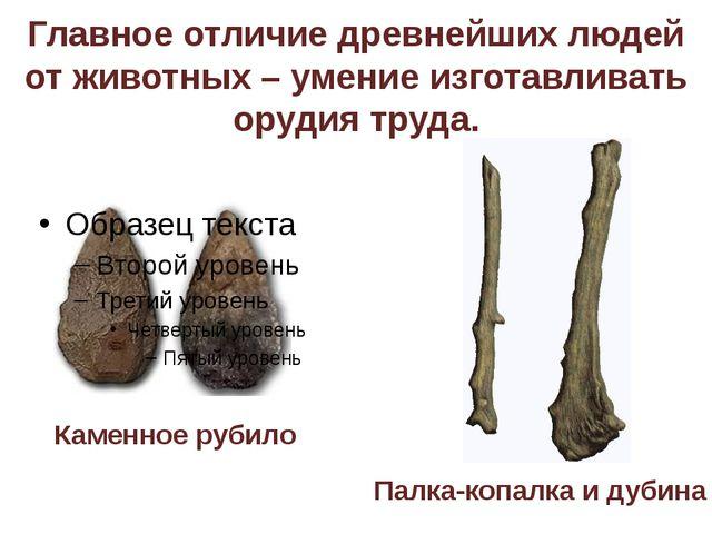 Главное отличие древнейших людей от животных – умение изготавливать орудия тр...