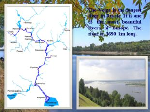 The Volga is the longest river in Russia. It is one of the most beautiful riv