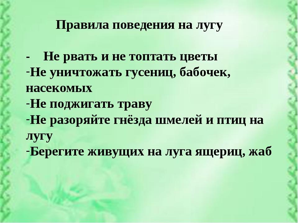Правила поведения на лугу - Не рвать и не топтать цветы Не уничтожать гусени...